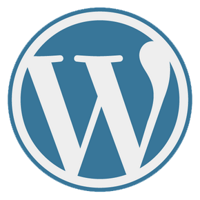 Expert WordPress freelance à Nice